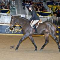 Katavi 2nd in Lieutenant's General Cup at RAWF